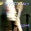 bucketheadnet